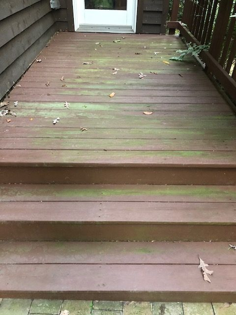 power washing algae growth
